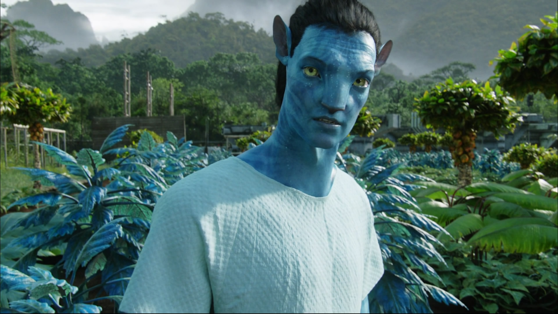 avatar new amazing hd wallpapers(high quality) - all hd wallpapers