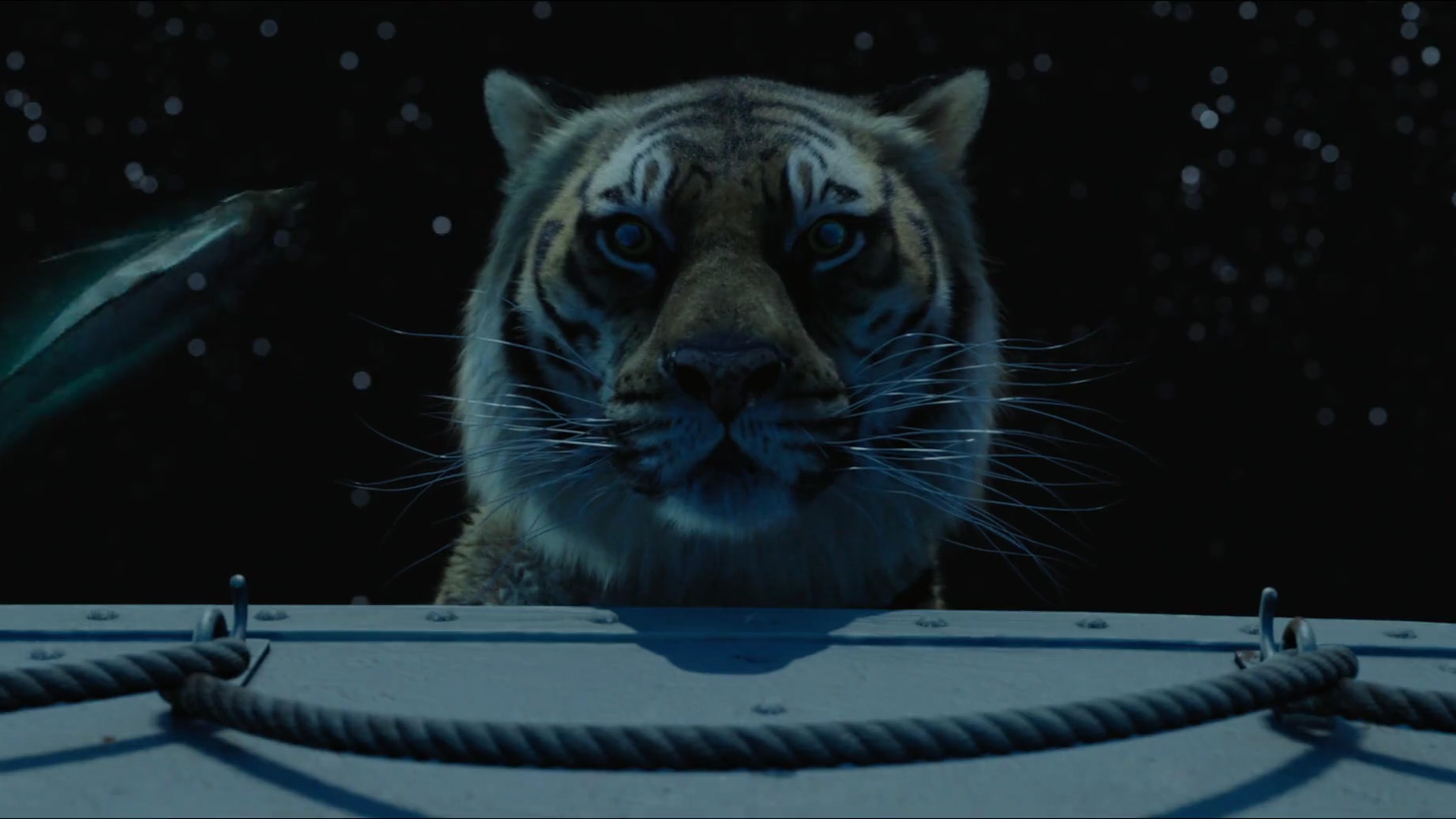 life of pi Life of pi is a canadian fantasy adventure novel by yann martel published in 2001 the protagonist is piscine molitor pi patel, an indian boy from pondicherry who .