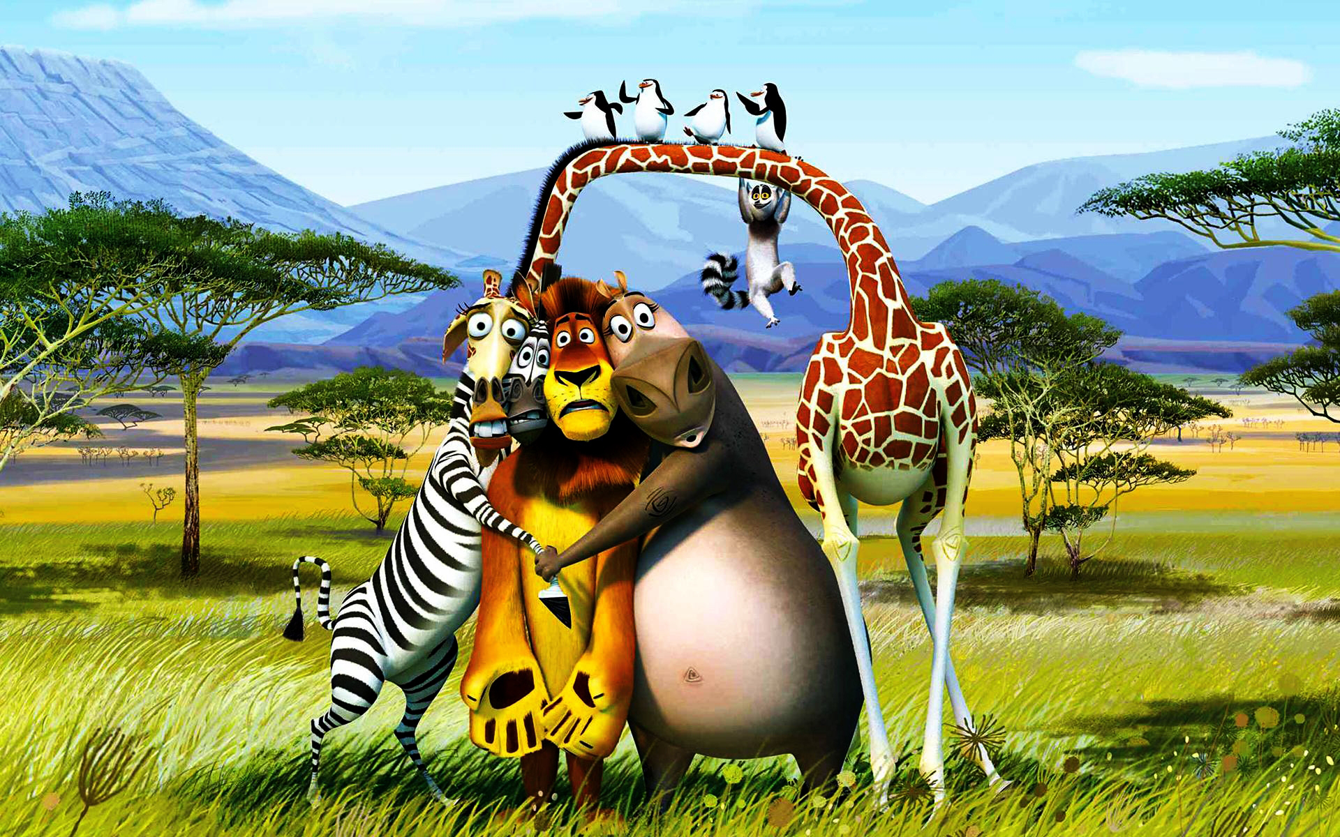 Hd wallpaper download for pc - Madagascar 3 Europe S Most Wanted Hd Wallpapers