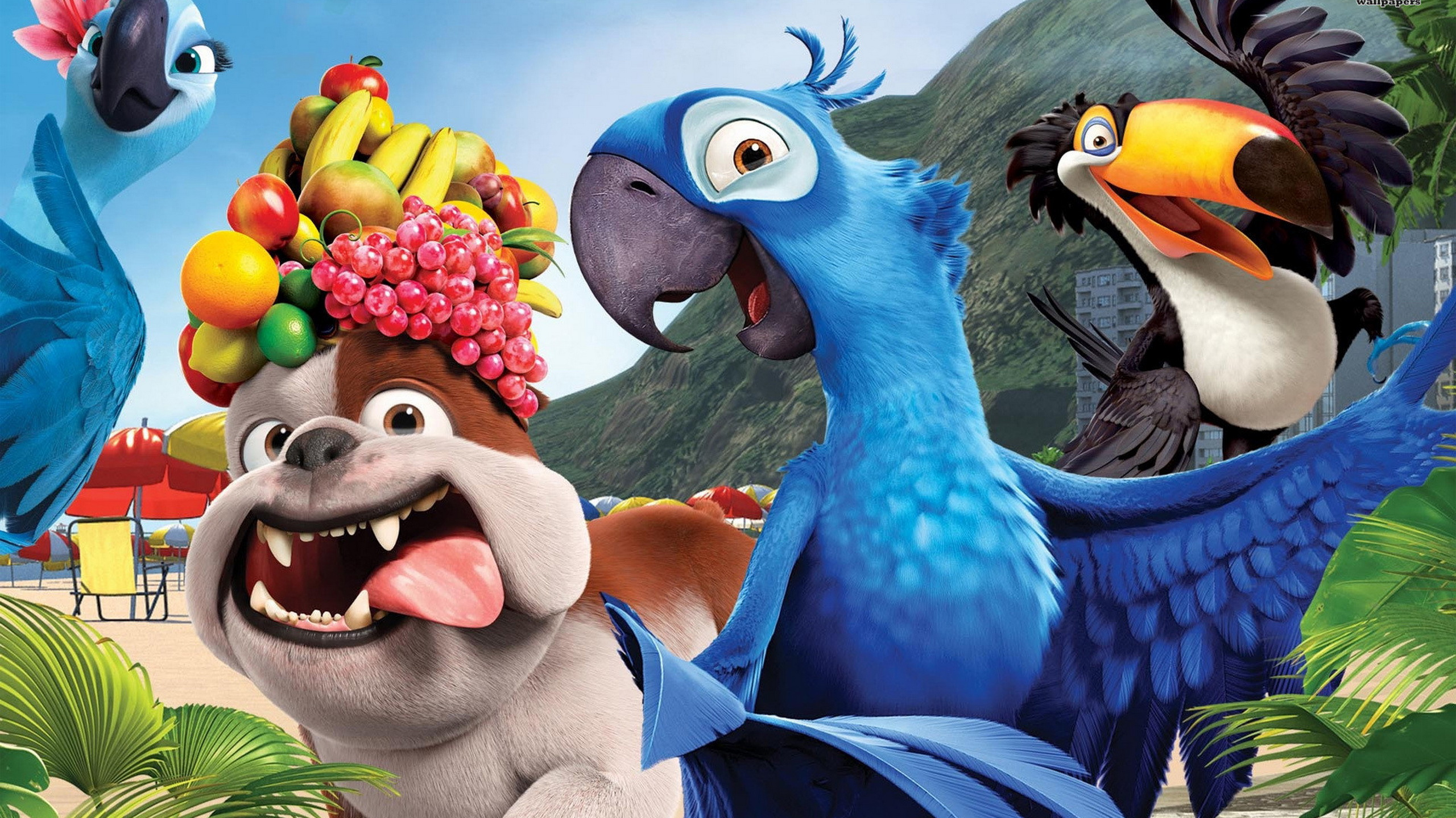 Rio 2 animated movie amazing hd wallpapers 2015 all hd wallpapers rio 2 7 rio voltagebd Choice Image