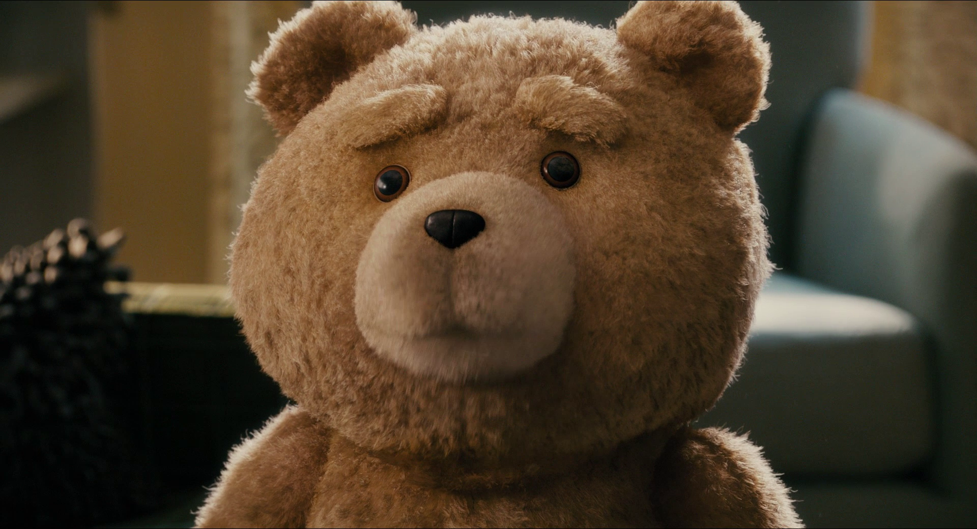 beautiful ted movies desktop hd wallpapers