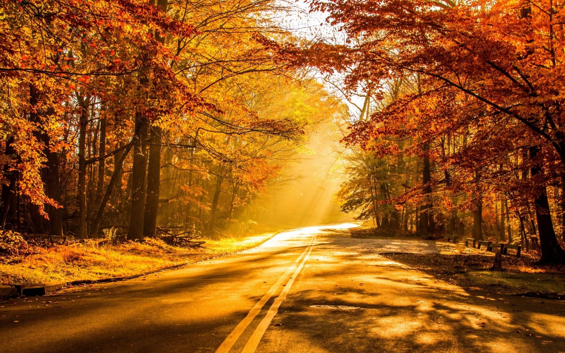 Collection of some best scene of autumn season hd for Best pictures