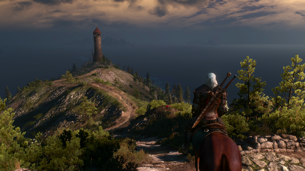 The Witcher 3 game (7)