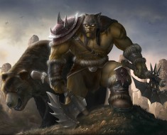 World Of Warcraft game (4)