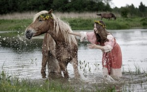 Beautiful Horses Amazing High Quality Wallpapers