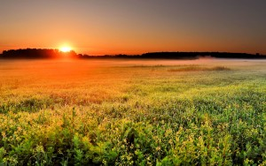 Beautiful Sunrise Wallpapers 2015 (High Definition)