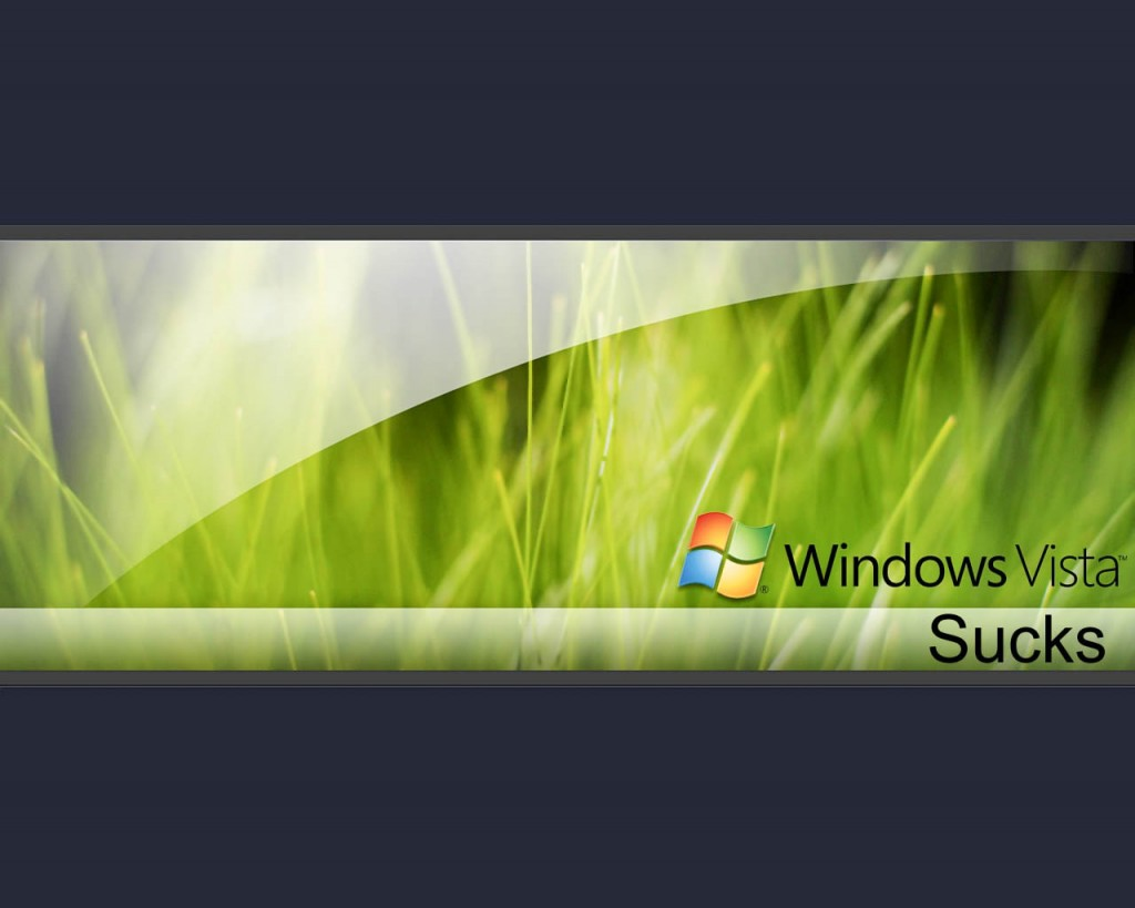 Windows Vista (9)