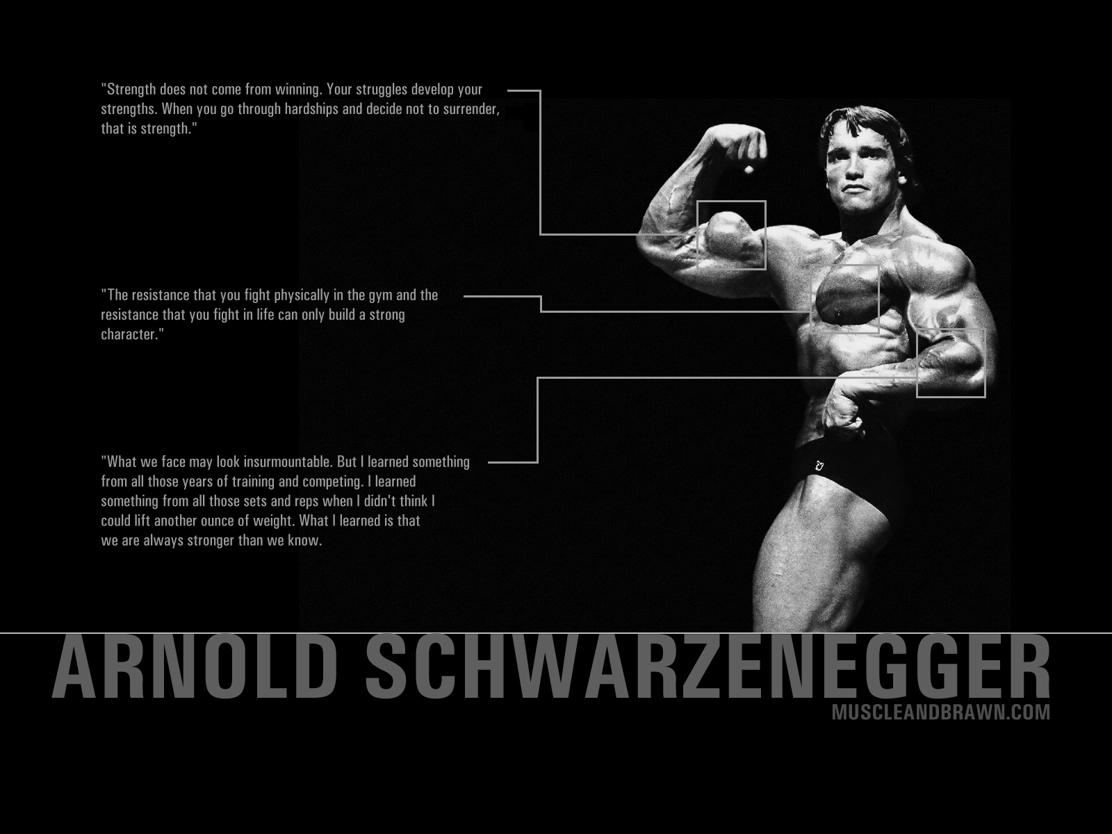 Bodybuilding Amazing HD Wallpapers High Resolution
