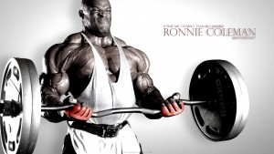 Bodybuilding Amazing HD Wallpapers (High Resolution)