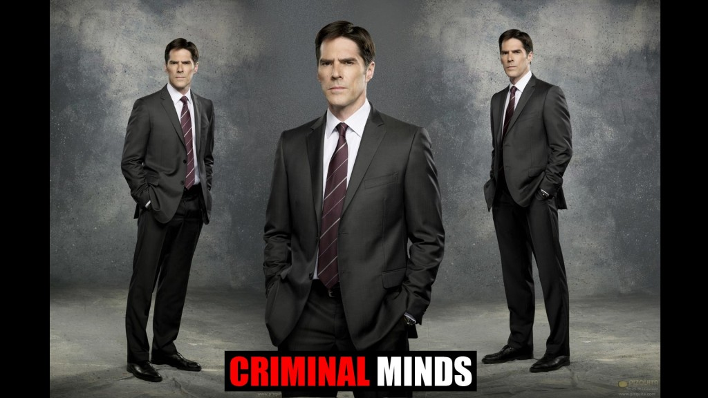 Criminal Minds (3)