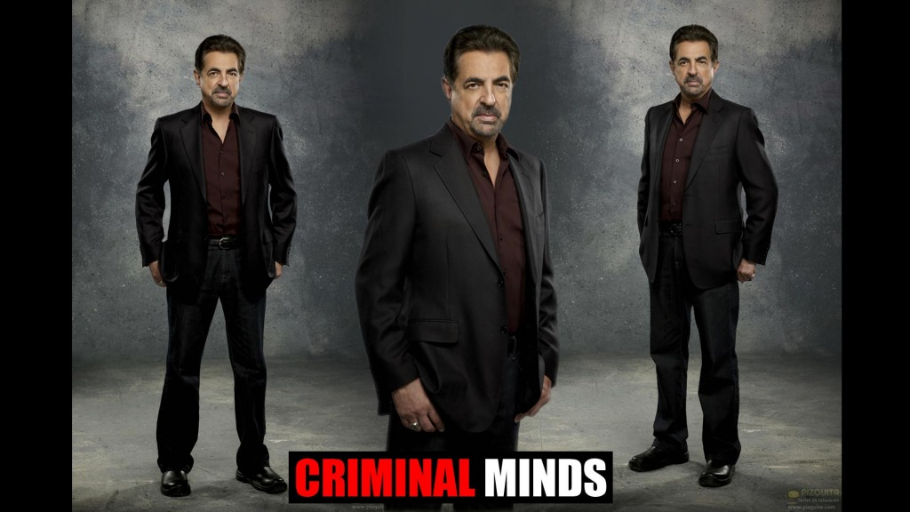 Criminal Minds (6)
