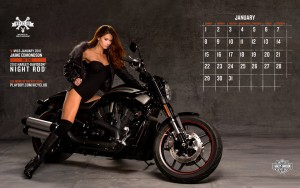 Harley-Davidson HD Wallpapers(High Quality)