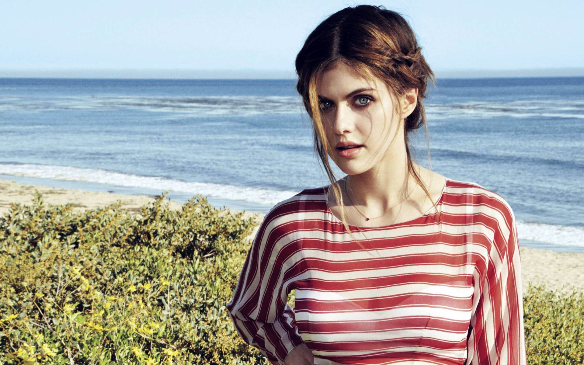 beautiful alexandra daddario new hd wallpapers - all hd wallpapers