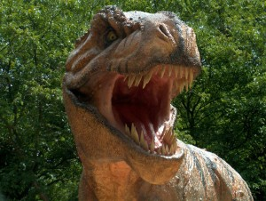 Dinosaur Amazing HD Pictures, Wallpapers In High Resolution..