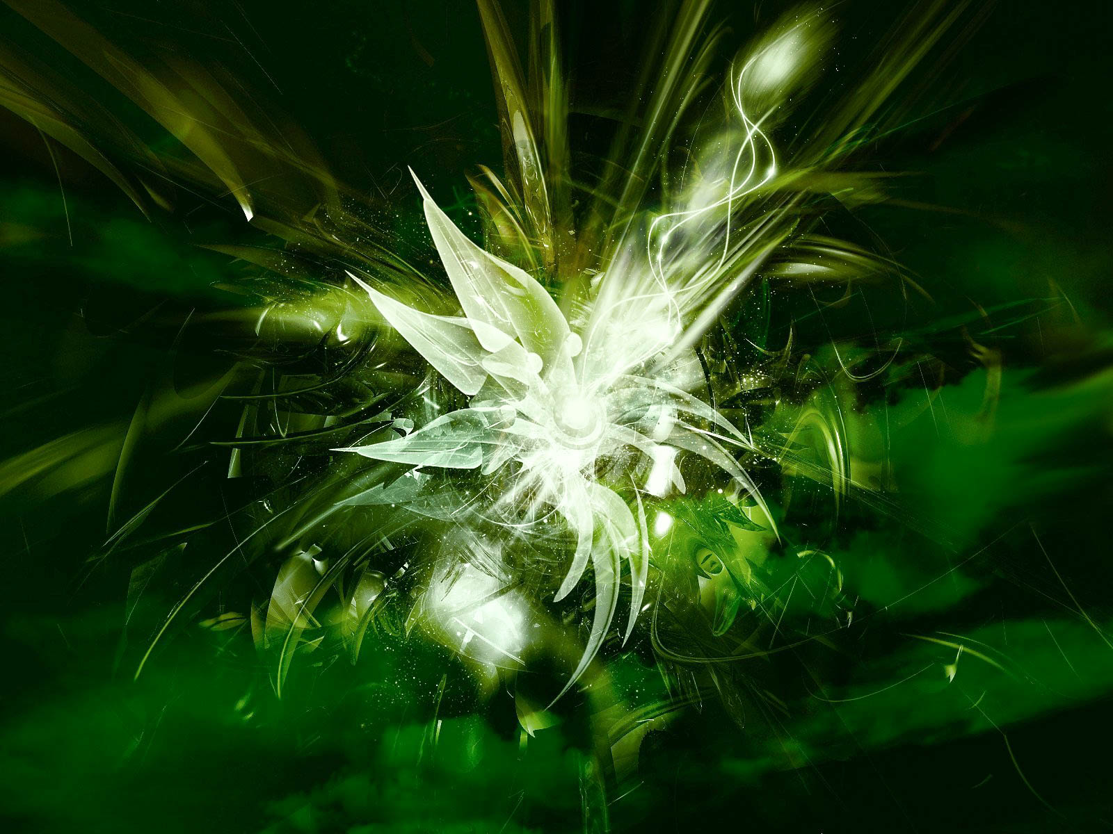 green abstract hd wallpapers in high resolution