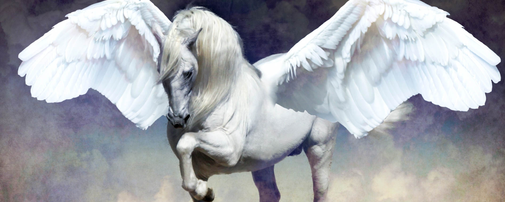 Pegasus Beautiful Wallpapers Images Desktop Background In