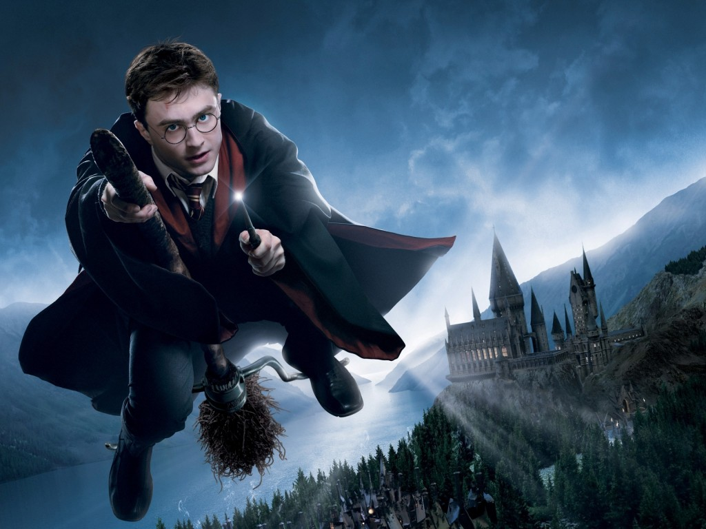 harry potter (4)