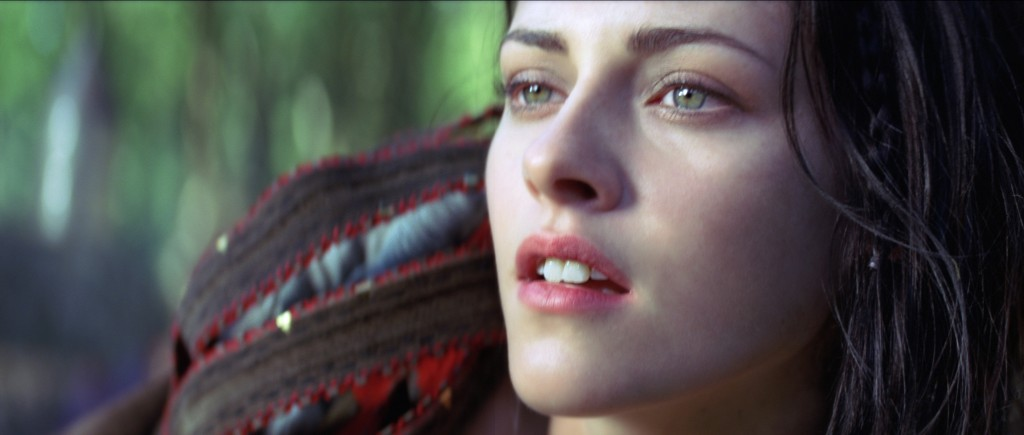 snow white and the huntsman (10)