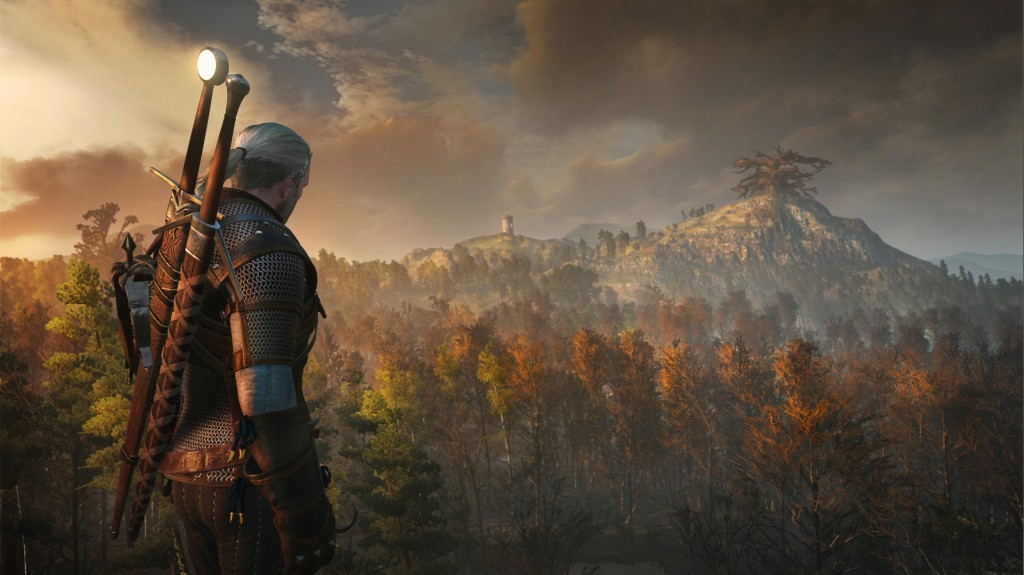 The Witcher 3 . Wild Hunt (10)