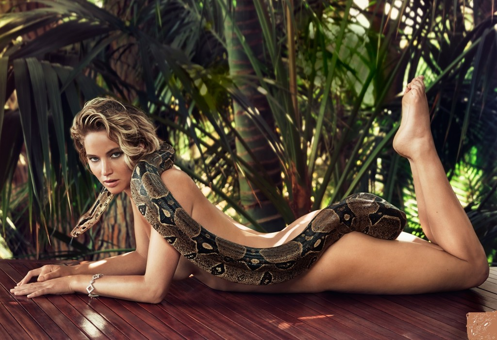 High Definiton Wallpapers In The Girls Wallpaper  E2 80 A2 Hollywood  E2 80 A2 Photography Named As Beautiful Jennifer Lawrence New Hottest Pictures Are Listed Above