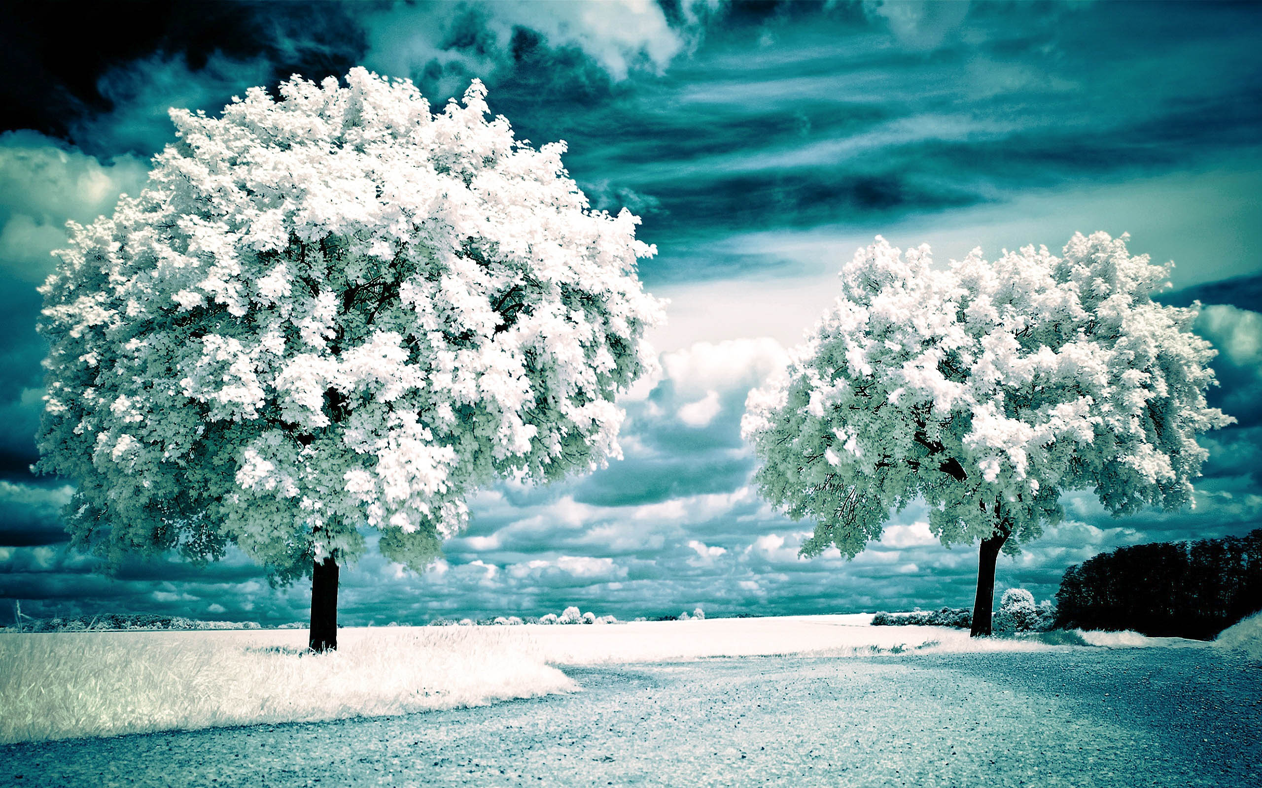 Beautiful Scenic Hd Wallpapers 2015 High Quality - All -7053