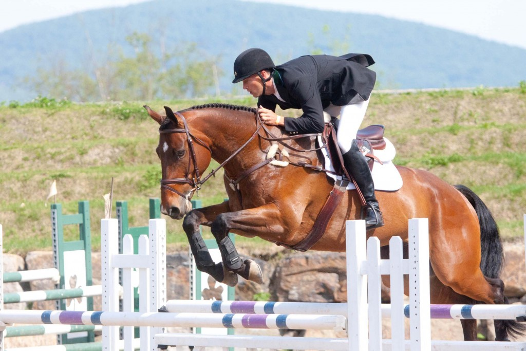 Show Jumping (1)