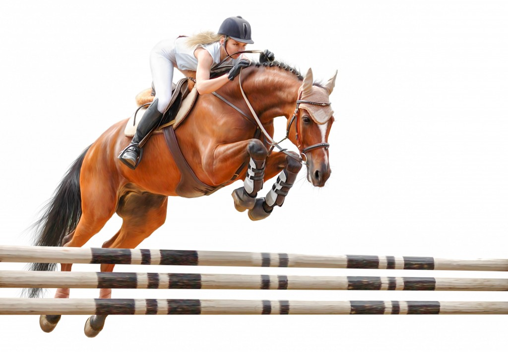Show Jumping (2)
