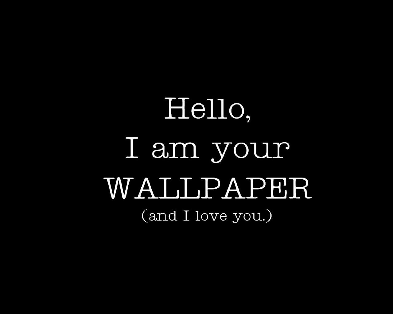 Some Funny Hd Wallpaprs Backgrounds High Quality All Hd Wallpapers
