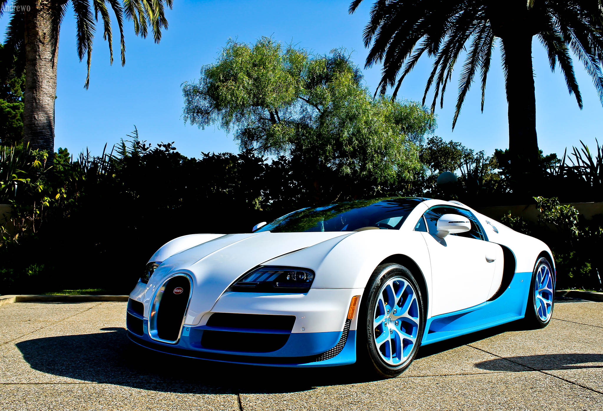 Bugatti Veyron Wallpapers Pictures In High Quality All Hd Wallpapers