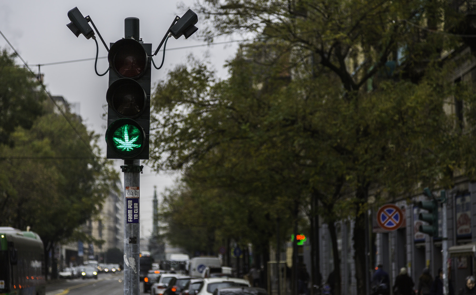 Weed leaf traffic signal green light