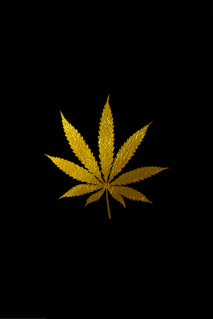 gold weed leaf with black background
